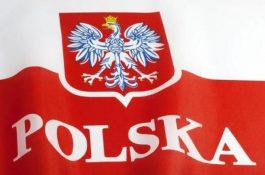 830 MW: Polská fotovoltaika zažila v roce 2019 obří boom