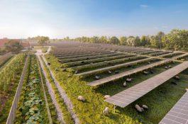 Ve Vídni vznikne největší fotovoltaická elektrárna vRakousku