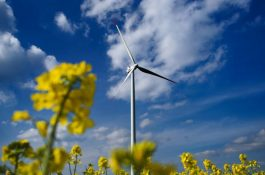 PORTIVA expanduje voblasti zelených investic v Česku