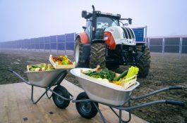 Po vzoru Rakouska se vČesku připravují první agrovoltaické solární elektrárny