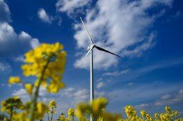 Výrobní firmy investuji stále více do zelené energie
