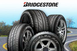 Bridgestone vyrábí pneumatiky s využitím obnovitelných zdrojů