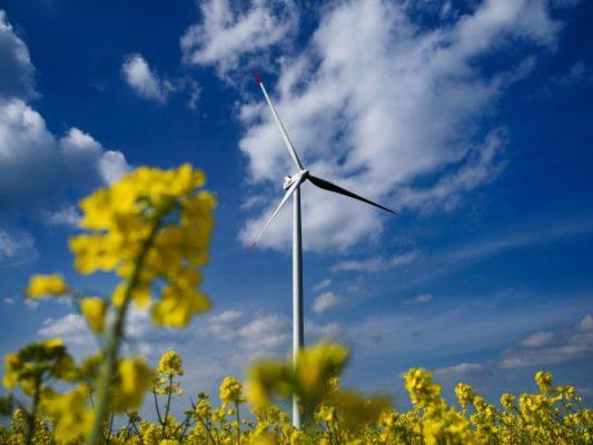 Ekologická témata se stávají prioritou před volbami do Sněmovny